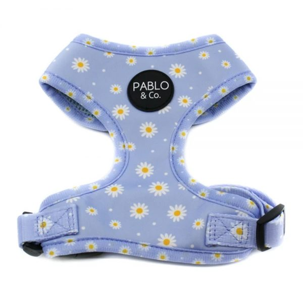 Blue Daisy Adjustable Harness Pablo and Co - Oasis Pet Styling Dog Grooming Cat Pet Groomers Singleton Hunter Valley Erina Central Coast