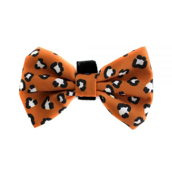 THAT LEOPARD BOW TIE Pablo and Co - Oasis Pet Styling Dog Grooming Cat Pet Groomers Singleton Hunter Valley